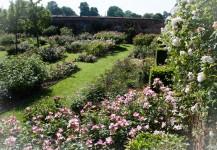 roseraie rambures